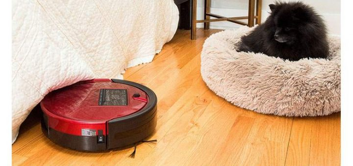 The Benefit Of Picking The Best Vacuum For Pet Hair!
